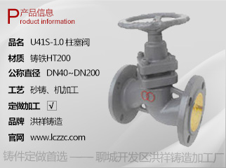 U41S-1.0 柱塞阀